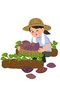 농부 (농수산업), 농장근로자 (농수산업), 농업, 농작물 (식물)