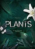 그래픽이미지, 편집디자인, 녹색 (색상), 그리너리, 자연 (주제), 잎 (식물부분), 꽃, 깨끗함 (좋은상태), 환경 (주제)