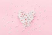벚꽃, 꽃, 벚꽃축제, 봄, 분홍, 분홍 (색상), 꽃잎, 꽃송이, 하트, 사랑 (컨셉)
