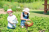어린이 (인간의나이), 초등학생, 채소밭 (경작지), 텃밭작물 (경작), 농작물 (식물), 미소, 물뿌리개 (원예장비)