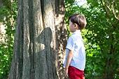 어린이 (인간의나이), 초등학생, 나무기둥, 숲, 그림자, 정체성 (컨셉)