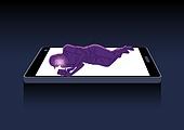 소셜미디어마케팅 (디지털마케팅), 사회문제, 이슈, 중독, 스마트폰, 스몸비 (컨셉), 불면증 (질병), 여성 (성별)