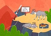 동물, 일러스트, 멸종, 멸종위기동물, 멸종위기동물 (동식물), 밀렵, 범죄 (사회이슈)