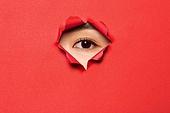 여성 (성별), 숨기 (움직이는활동), 응시 (감각사용), 숨기, 사람눈 (주요신체부분)