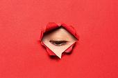 여성 (성별), 숨기 (움직이는활동), 응시 (감각사용), 숨기, 엿보기 (응시), 응시, 사람눈 (주요신체부분)