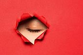 여성 (성별), 숨기 (움직이는활동), 응시 (감각사용), 숨기, 사람눈 (주요신체부분), 눈감음 (정지활동)