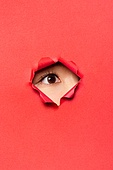여성 (성별), 숨기 (움직이는활동), 응시 (감각사용), 숨기, 엿보기 (응시), 몰래카메라, 사람눈 (주요신체부분)