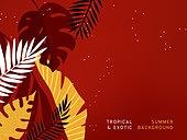 여름, 야자잎, 트로피컬패턴, 열대나무 (나무), 상업이벤트 (사건)