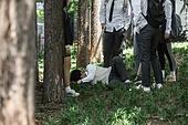 고등학생, 반항청소년, 괴롭힘 (사회이슈), 학교폭력, 왕따