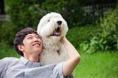 개 (개과), 반려동물, 애완견, 올드잉글리쉬시프도그