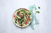 음식,샐러드,해산물,식탁보,접시,그릇,채소,생강,주꾸미
