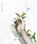 그래픽이미지, 뷰티, 사람손 (주요신체부분), 꽃, 식물, 잎 (식물부분), 깨끗함 (좋은상태), 스킨케어 (뷰티), 파스텔톤 (색상강도)