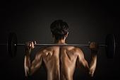 근육강화운동, 근육질, 보디빌딩 (근육강화운동), 사람근육, 운동기구, 웨이트트레이닝, 헬스클럽, 역기