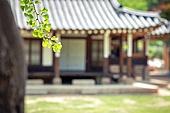 한옥 (한국전통), 은행잎