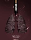 포스터, 금연 (흡연문제), 흡연 (주제), 흡연문제, 세계금연의날 (사회이슈), 사회이슈, 연기 (물리적구조), 담배제품 (인조물건), 폐