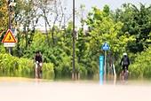 서울 (대한민국), 여름, 폭염, 뜨거움 (컨셉), 폭염 (자연현상), 여름 (계절), 아지랑이