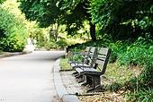 공원, 벤치, 의자 (좌석)