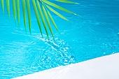 오브젝트 (묘사), 여름, 시원함 (컨셉), 아크릴, 밝은청색 (파랑), 탑앵글, 백그라운드, 물 (자연현상), 파장, 물결, 바다, 수영장, 잎, 식물, 야자잎