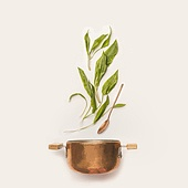 Wild garlic leaves and cooking pot with spoon on white background. Healthy seasonal food and eating concept