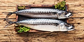 Salted mackerel on a kitchen board.Smoked mackerel. Smoked fish with herb