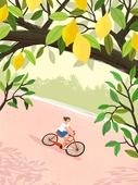 여름, 풍경 (컨셉), 여성 (성별), 라이프스타일, 휴식, 나무, 자연 (주제), 레몬, 레몬나무, 자전거