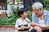 노인남자 (성인남자), 사회복지 (사회이슈), 조손가정 (가족), 어린이 (인간의나이), 아이스바