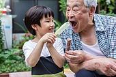 노인남자 (성인남자), 사회복지 (사회이슈), 조손가정 (가족), 어린이 (인간의나이), 아이스바, 먹여주기 (움직이는활동)