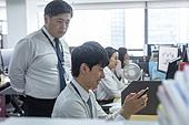 한국인, 비즈니스맨 (사업가), 사무실 (업무현장), 신입사원 (화이트칼라), 신입사원, 인턴 (직업), 인턴, 휴대폰, 스마트폰