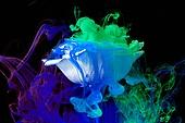 물 (자연현상), 파장, 파문 (물체묘사), 백그라운드, 패턴, 물결, 잉크, 페인트 (예술도구), 모션, 활력, 수채물감, 추상, 미술 (미술과공예), 검정배경, 번짐, 재질 (물체묘사), 컬러, 섞기 (움직이는활동), 장미, 꽃, 식물, 꽃잎, 형광빛 (발광), 파랑, 녹색 (색상)