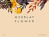 파워포인트, 메인페이지, 오버레이, 꽃, 백그라운드, 식물, 플랫디자인 (이미지)