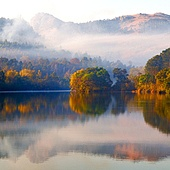 in swaziland the mlilwane wildlife sanctuary and his lake near tree and fog
