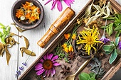 motley healthy herbs. set of herbs, plants and inflorescences in a wooden box