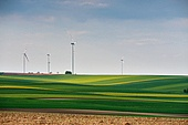 Green environment. Eco power. Wind turbines generating electricity. Spring sunny day on green field with wind power generators in Austria