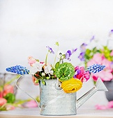 Watering can with colorful garden flowers on table, front view, gardening concept