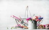 Pretty gardening setting with watering can , basket, gardening tools and flowers at white wall background, front view.