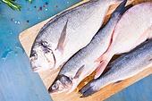 fresh sea fish preparation - dorada and seabass raw breams choise of fresh fish on cutting board closeup. fresh sea fish preparation