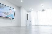 거실, 텔레비전 (전기용품)