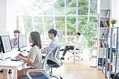 스타트업, 사무실, 여성, 책상