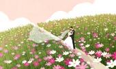 결혼 (사건), 결혼, 가을, 풍경 (컨셉), 신혼부부, 포즈 (몸의 자세), 코스모스, 웨딩드레스 (드레스)
