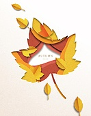 종이 (재료), 페이퍼아트, 가을, 낙엽, 단풍잎 (잎)