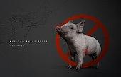 아프리카 돼지열병