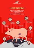 아프리카돼지열병(ASF)