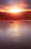 그래픽이미지, 포스터, 이벤트페이지, 가을, 단풍나무 (낙엽수), 단풍철 (가을), 단풍잎 (잎), 카피스페이스 (콤퍼지션)