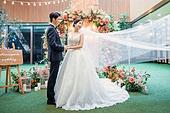 남성, 여성, 결혼식, 커플, 웨딩드레스, 손잡기 (홀딩)