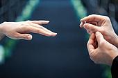 결혼식 (결혼), 신랑, 신부 (결혼식역할), 부부, 결혼반지, 사람손 (주요신체부분)