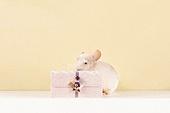 2020년, 2020, 새해 (홀리데이), 실험쥐, 쥐 (쥐류), 쥐띠해 (십이지신), 쥐류, 연하장 (축하카드)