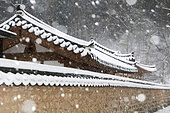 사진, 풍경 (컨셉), 겨울, 눈 (얼어있는물), 설경, 풍경, 전통가옥