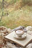 실내, 창문, 카페, 계절, 겨울, 뜨거움, 니트천, 스웨터, 전구 (전등빛), 테이블, 커피 (뜨거운음료), 커피잔, 책, 카푸치노, 거품아트 (카푸치노), 가을, 잎 (식물부분), 단풍잎
