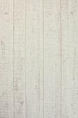 오브젝트 (묘사), 실내, 스튜디오촬영, 탑앵글, 백그라운드, 나무