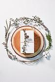오브젝트 (묘사), 실내, 스튜디오촬영, 계절, 가을, 겨울, 크리스마스 (국경일), 크리스마스선물, 선물 (인조물건), 선물상자, 리본 (봉제도구), 식물, 드라이플라워, 꽃